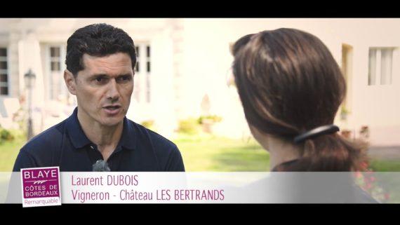Blaye Friday – Château Les Bertrands